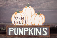 Fresh Pumpkins Royalty Free Stock Images