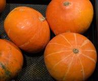 Fresh pumpkins on sale Stock Photos