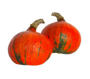 Fresh Pumpkins Royalty Free Stock Photo