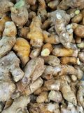 Pure ginger. Fresh pure ginger in the grocery market Royalty Free Stock Photography
