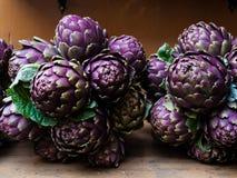 Fresh purple artichoke Royalty Free Stock Images