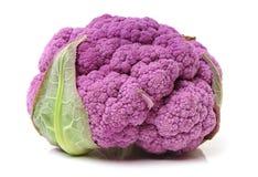 Fresh Purple Cauliflower Stock Images