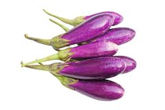 Fresh purple eggplant royalty free stock image