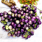 Fresh purple eggplant organic. Vegetables in farmer market  Luang Prabang, Laos Royalty Free Stock Image
