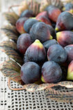 Fresh purple figs Royalty Free Stock Photo