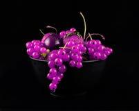 Fresh purple  fruit on black. Background Stock Photo