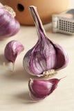 Fresh purple garlic Royalty Free Stock Image