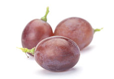 Fresh purple grape Stock Photography