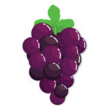 Fresh Purple Grape Fruit Royalty Free Stock Photography