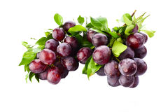 Fresh purple grapes isolated on white Stock Photography
