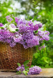Fresh purple lilac flower bouquet on wood. Outdoors Stock Photography