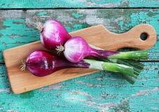 Fresh purple onion, top view. Fresh purple onion on a wooden board Stock Photo