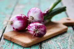 Fresh purple onion. On a wooden board Stock Images