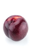 Fresh purple plum. Single isolated fresh purple plum on a white background Stock Image