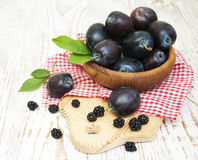 Fresh purple plums and blackberry Stock Photography