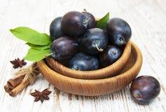 Fresh purple plums Stock Image