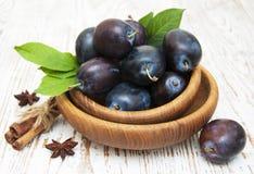 Fresh purple plums Royalty Free Stock Image