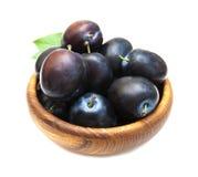 Fresh purple plums Stock Photography