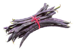 Fresh purple string beans. Tied red ribbon isolated on white background Royalty Free Stock Image