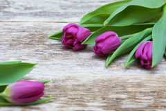 Fresh purple tulip flowers on wooden table Royalty Free Stock Photo