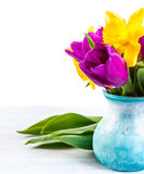 Fresh purple tulip, yellow flowers close up  on white background Bouquet snowdrops on wooden background. Spring. Fresh purple tulip, yellow flowersclose up  on Royalty Free Stock Images
