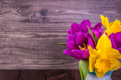 Fresh purple tulip, yellow flowers close up on wooden background Bouquet snowdrops on wooden background. Spring flowers. Fresh purple tulip, yellow flowers close Royalty Free Stock Photos