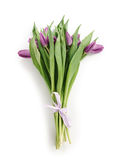 Fresh purple tulips bouquet from above on white. Background Stock Photo
