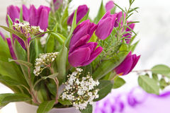Fresh purple tulips. Bouquet of Fresh purple tulips and blooming branches Stock Photography