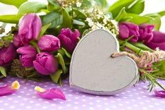 Fresh purple tulips Royalty Free Stock Photo