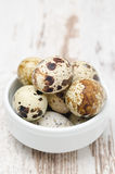 Fresh quail egg in bowl, selective focus. Fresh quail egg in white bowl, selective focus Royalty Free Stock Image
