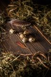 Fresh quail egg. On rustic wooden background Stock Images