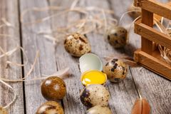 Fresh quail egg. S over aged wooden background Stock Images