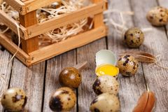 Fresh quail egg. S on wooden background Stock Photo