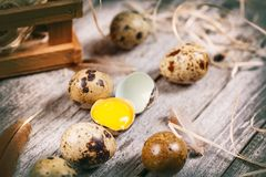 Fresh quail egg. On rustic wooden background Stock Photos