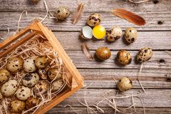 Fresh quail egg. Top view of quail eggs on wooden background Stock Image