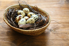 Fresh quail eggs in a basket. Food closeup Royalty Free Stock Images