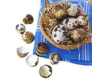 Fresh quail eggs in a basket. Quail eggs in a basket - white background Royalty Free Stock Photos