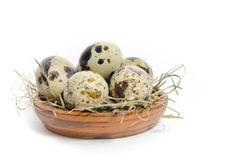 Fresh quail eggs in a bowl. Group of fresh, tasty quail eggs in an earthenware bowl , isolated on white background Stock Image