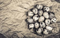 Fresh quail eggs on brown wrapping paper. Copy cpase. Top view. Monochrome Royalty Free Stock Photo