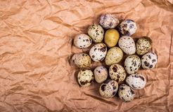 Fresh quail eggs on brown wrapping paper. Dietary products. Organic fresh eggs. Copy space Stock Images