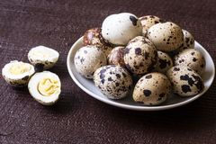 Fresh quail eggs. Food concept Stock Photos
