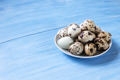 Fresh quail eggs. Food concept Royalty Free Stock Images