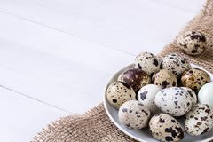 Fresh quail eggs. Food concept Royalty Free Stock Photography