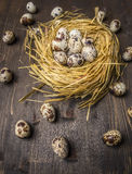 Fresh quail eggs in the nest  wooden rustic background top view close up Stock Photography