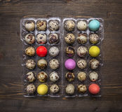 Fresh quail eggs  plastic box with decorative eggs for Easter on wooden rustic background top view close up Royalty Free Stock Photography