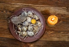 Fresh quail eggs in a plate. On a wooden background Stock Photography