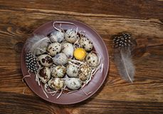 Fresh quail eggs in a plate. On a wooden background Stock Image
