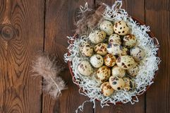 Fresh quail eggs in a plate on a wooden background. Rustic style.  Stock Photography