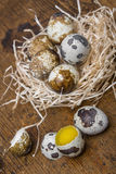 Fresh quail eggs Royalty Free Stock Photos