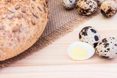 Fresh quail eggs with rye bread. On sackcloth Stock Photos